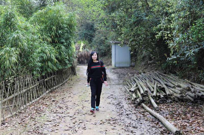 男人在树林间的小路描述已自动生成