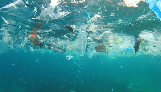 """《再生资源回收行业发展瓶颈及""""互联网+""""模式,看每日一收》"""