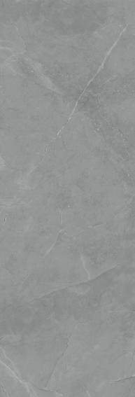 Moonstone_DP42P_900 x 2650 x 6.5 (1)