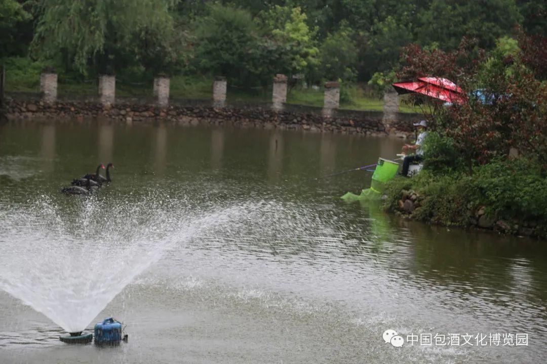 浦城印象小密景区天鹅湖垂钓