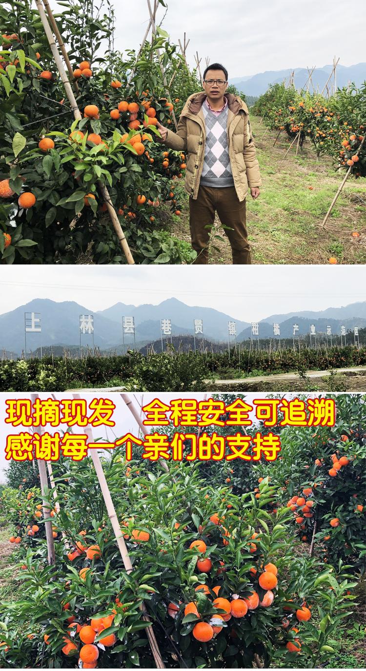 梧州 农产品整合行业招商运营资源的专业平台