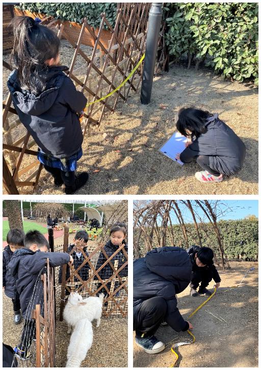 惠立这所杭州双语幼儿园:如果创建为社群积极赋能的教学环境
