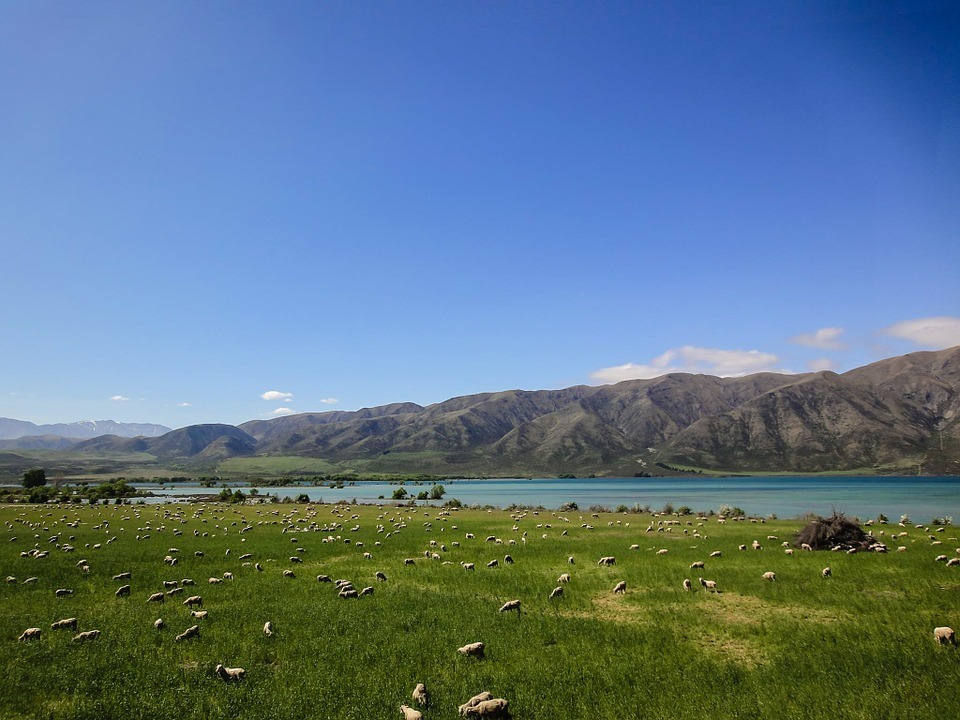 魔法开启,跟随27000婴儿水,立即穿越去新西兰!