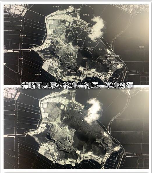 说一说从小长大的辽东南沿海防护林的变化