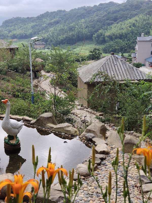 图片包含 户外, 山, 橙子, 草  描述已自动生成