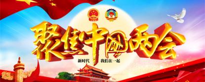 陈大顺——新时代爱国奋斗企业家献礼2021年全国两会