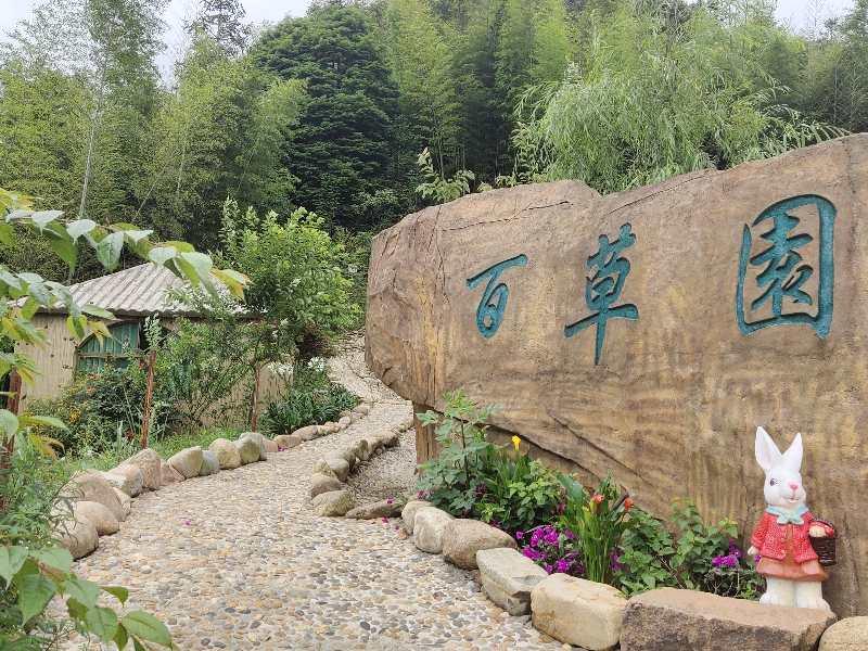 图片包含 户外, 花园, 前, 标志  描述已自动生成