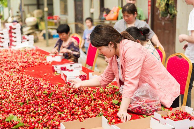 万众期待!新密市生鲜网货基地大樱桃直供站正式开园!
