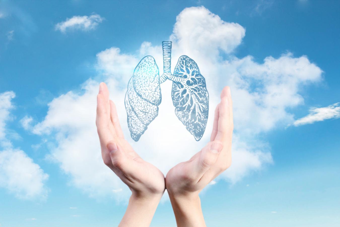 摄图网_500620138_净化空气保护肺(非企业商用)