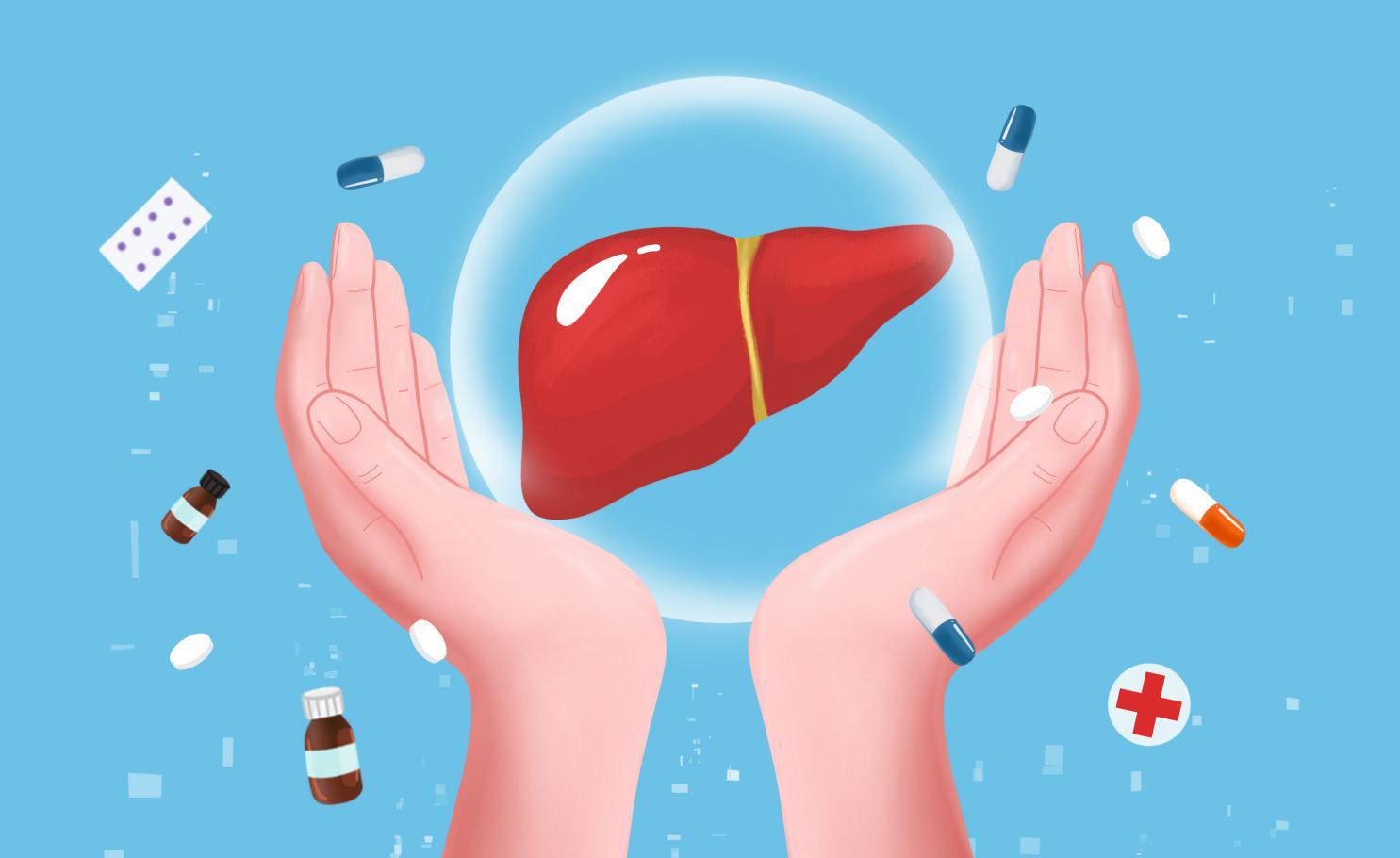 摄图网_401904882_双手保护肝脏(非企业商用)