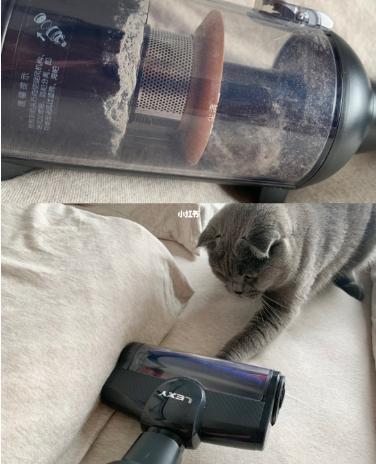 吸尘器养猫达人必备轻松解决全屋飘毛