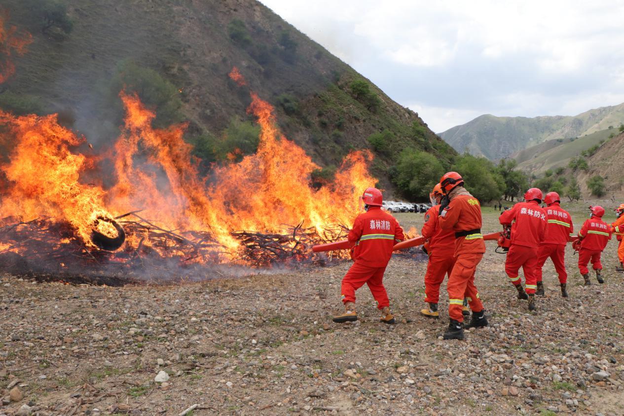 半专业培训丨森林灭火演练,锻造灭火制胜本领