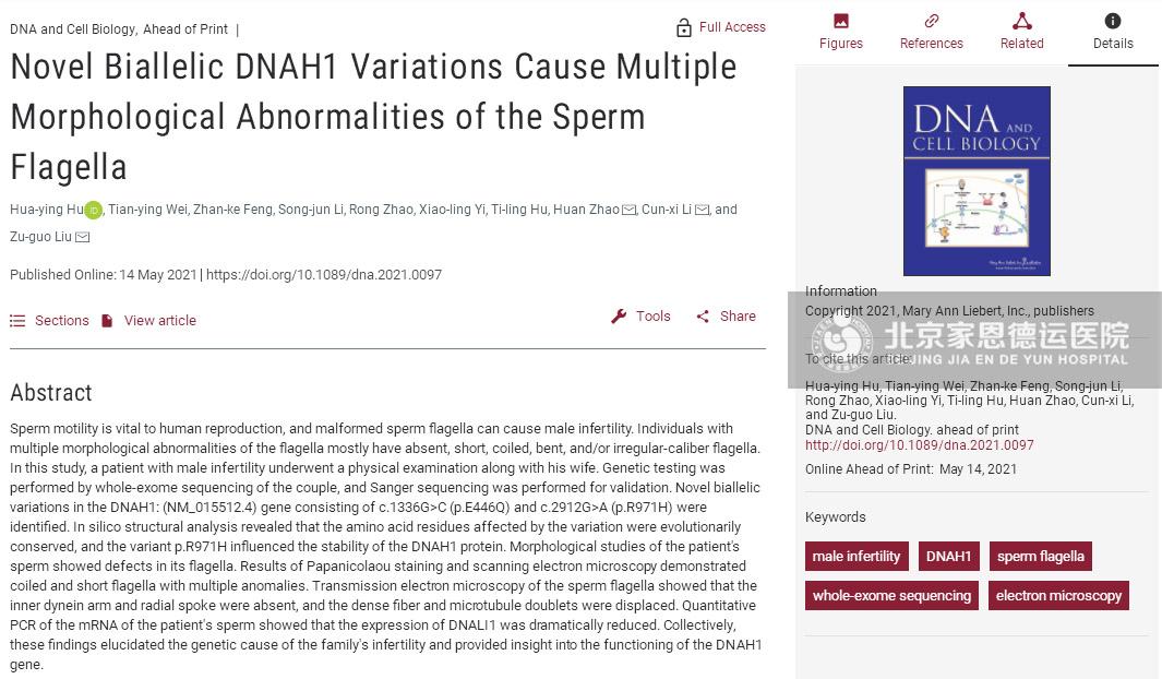IVF资讯 | 家恩德运医院遗传中心发现影响精子活力的新突变