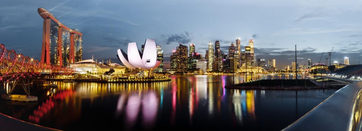 城市的夜景  描述已自动生成