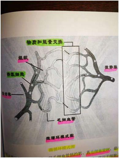 http://cgwoss.oss-cn-shenzhen.aliyuncs.com/210701092715674554823.jpeg