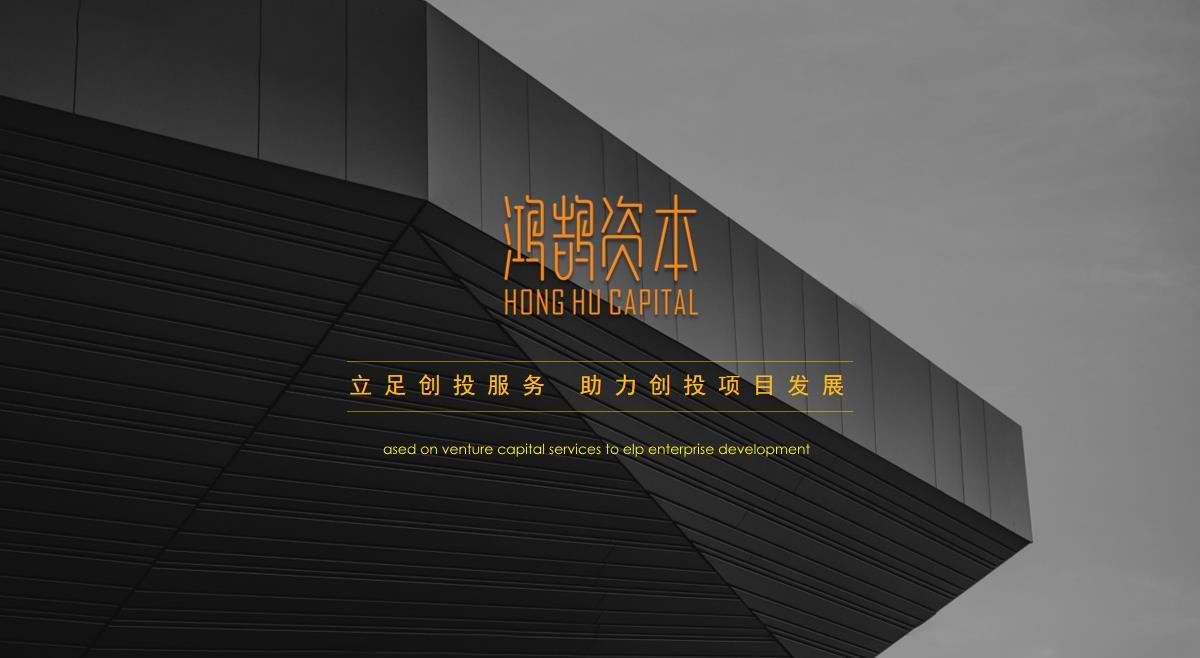 首家由海外华人华侨投资的鸿鹄资本将掀起怎样的波澜?