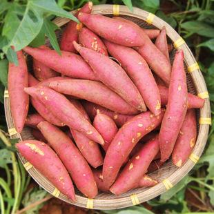 生鲜果蔬配送商城招商运营资源的专业平台
