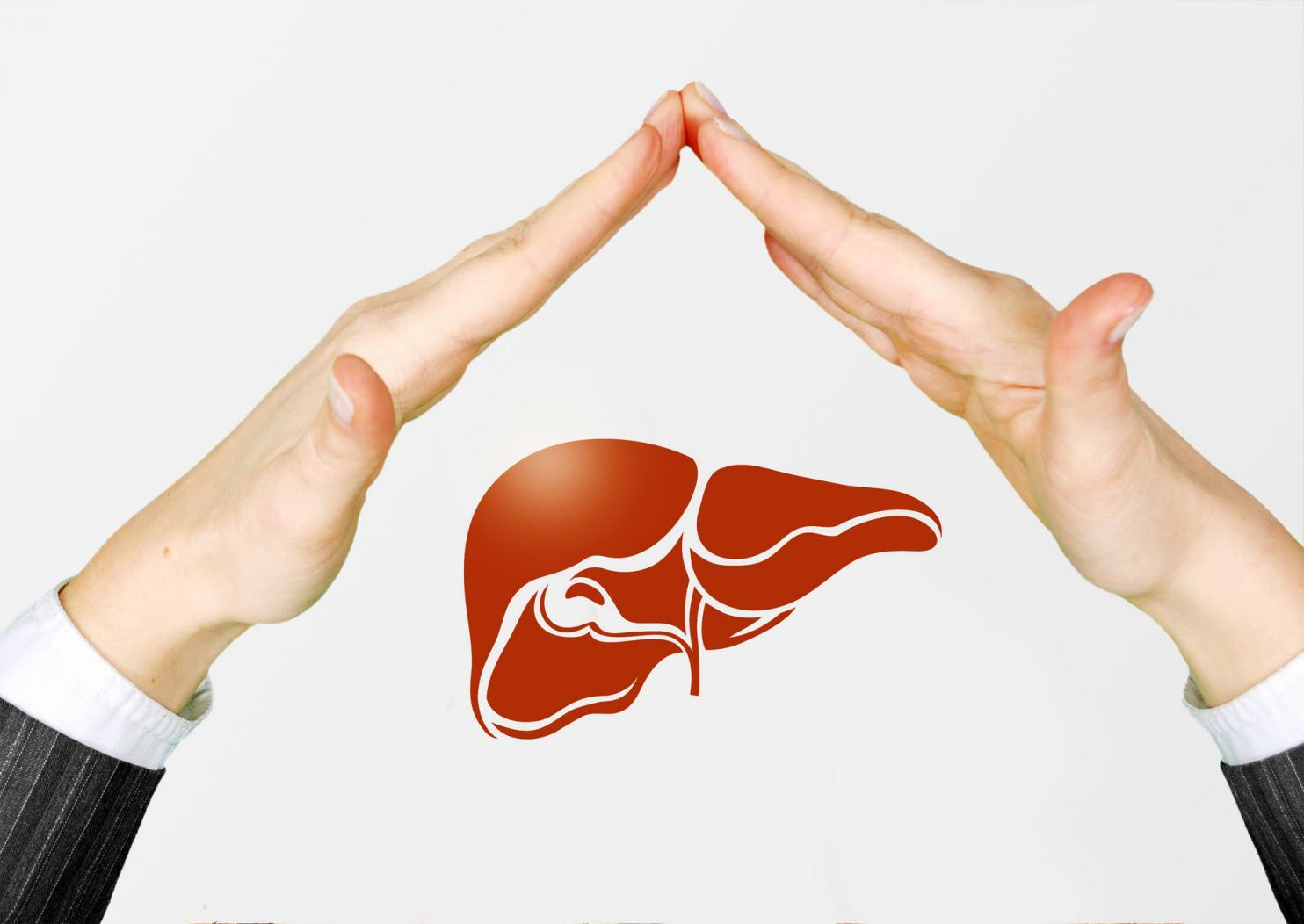 摄图网_500902852_banner_保护肝脏(非企业商用)