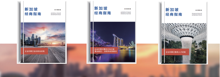 """新加坡福智霖集团成功举办""""中资企业出海实操经验分享会"""""""