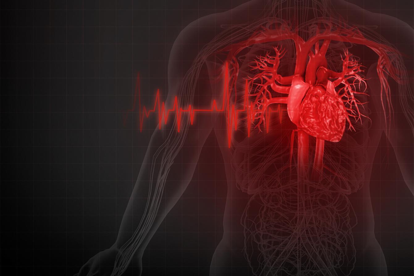 摄图网_401869166_banner_人体心脏疾病(非企业商用)